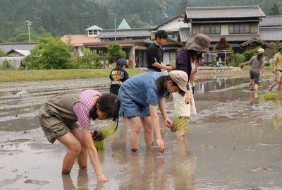 2011田植え−6.jpg