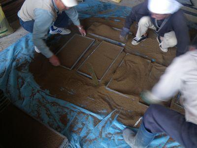 米の種まき1.jpg