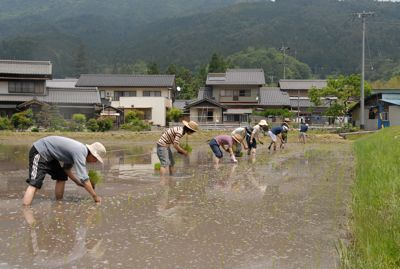 田植え2011−1.jpg