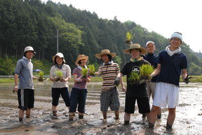 田植え2011−3.jpg